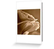 Raindrops on Sepia Rose Greeting Card