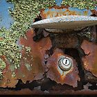 """Automotive Graveyard """" Time for a new Lock """" by Malcolm Heberle"""