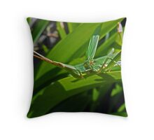 Grass Katydid Throw Pillow