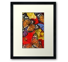 Composition With Butterflies and  Roses Framed Print