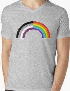 Homo-asexual Rainbow Mens V-Neck T-Shirt