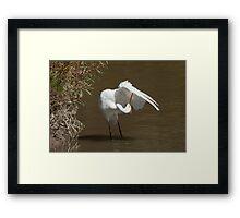 Wings, Check! Framed Print