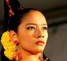 The Flamenco  by matt ucar