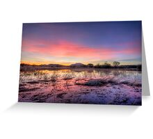 Pink Sundown Greeting Card
