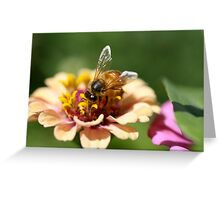 """""""Bee on a Mission"""" Greeting Card"""
