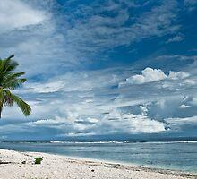 Beach Paradise by Alexander  Mieszkowski
