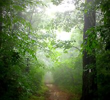Trail Magic by Cecilia Carr
