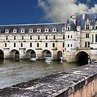Chenonceau Castle  by Adri  Padmos