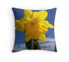 After Winter is Spring Throw Pillow