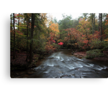 Natures beauty Canvas Print