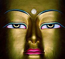 prince gautama. the buddha, india by tim buckley   bodhiimages