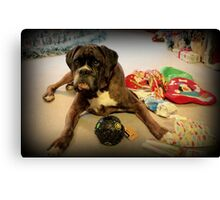 Is That Another Christmas Present For Me ? Canvas Print