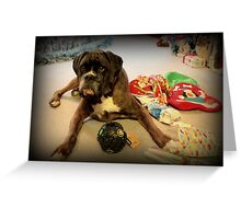 Is That Another Christmas Present For Me ?  - Boxer Dogs Series Greeting Card