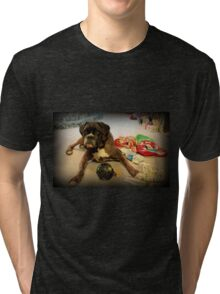 Is That Another Christmas Present For Me ?  - Boxer Dogs Series Tri-blend T-Shirt