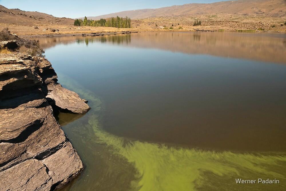 Butcher's Dam Reservoir by Werner Padarin