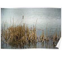 Stanwick Lakes, Northamptonshire Poster