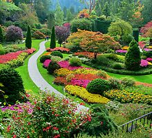 Butchart Gardens BC, Canada in the Fall by AnnDixon