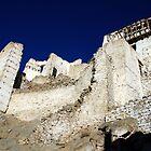 Tsemo Castle, Ladakh by Vivek Bakshi