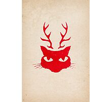 deer cat Photographic Print