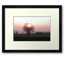Sun in the crown Framed Print