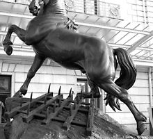 Horse statue by wildone