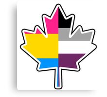 Panromantic Asexual Canadian Canvas Print
