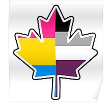 Panromantic Asexual Canadian Poster