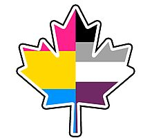 Panromantic Asexual Canadian Photographic Print