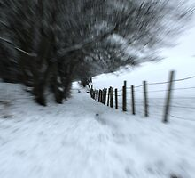 """Running down the """"Walkie"""" path. (look for a few seconds ) by weecoughimages"""
