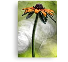 All Dressed Up - But, Still Alone Canvas Print
