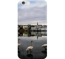 Iceland Geese iPhone Case/Skin