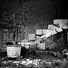 derelict, The Sassi, Matera, Basilicata, Italy by Andrew Jones