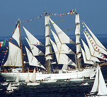 Tall Ship Cuahtemoc off Falmouth by diamondphoto
