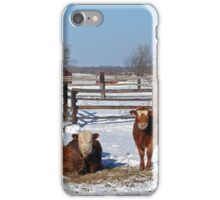 On The Prairie Farm iPhone Case/Skin