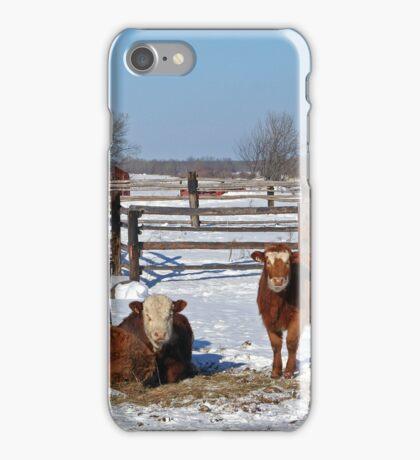 On The Prairie Farm iPhone Case/Skin