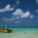 Simply Paradise by Jhug