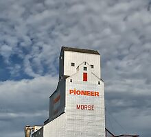 """Prairie Cathedral"" in Morse, Saskatchewan by Teresa Zieba"