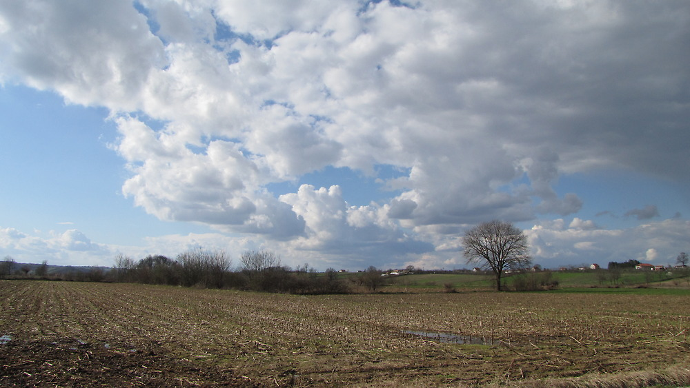 White cloud by branko stanic