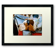 Lazy Dog with Aviator Cap and Goggles Framed Print