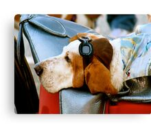 Lazy Dog with Aviator Cap and Goggles Canvas Print