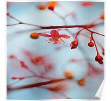 stillness 3 Poster