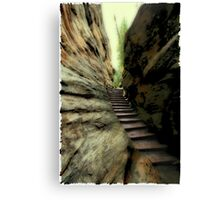 Natural Stairs Canvas Print