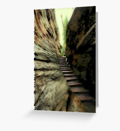 Natural Stairs Greeting Card