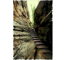 Natural Stairs Photographic Print