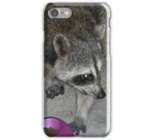 Catfood Burglar Caught RED-HANDED! iPhone Case/Skin