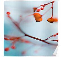 Stillness 4 Poster