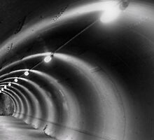 Interlaken Funnel by Holguinism