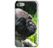 A Puppy iPhone Case/Skin