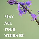 May All Your Weeds be Wildflowers by jeliza