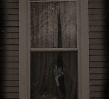 Ghost in the Window by Carrie Bonham